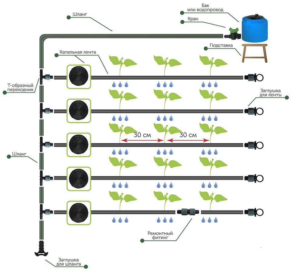 Расчет схемы капельного полива